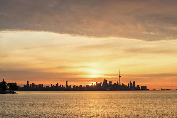 Photograph - Every Morning Is Different - Toronto First Sunrays In Cyber Yellow  by Georgia Mizuleva