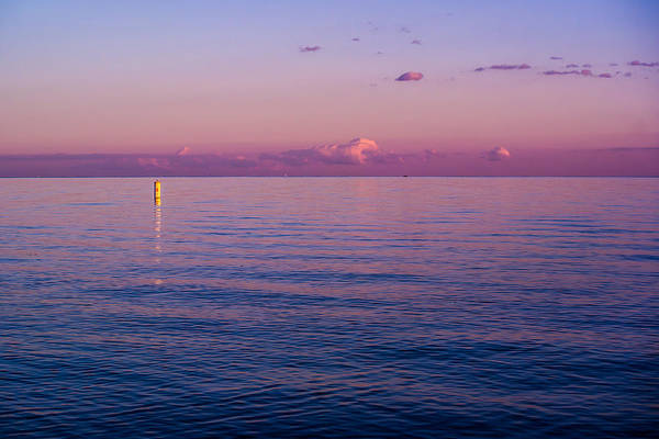 Sea Hunt Photograph - Everytime I See You  by Kristin Hunt