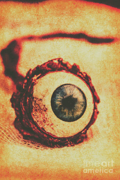 Body Parts Photograph - Evil Eye by Jorgo Photography - Wall Art Gallery