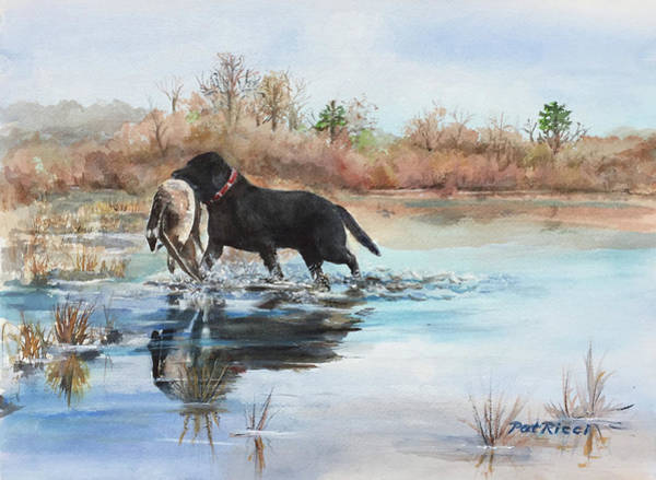 Westminster Painting - Ewan - Westminster Dog Show Entry by Patricia Ricci