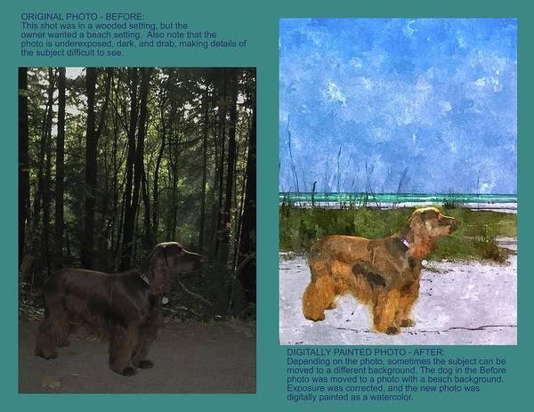 Photograph - Example 2b - Custom Photo Painting by Susan Molnar