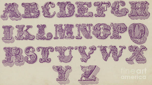 Old Style Drawing - Example Alphabet  by English School