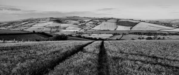Photograph - Exe Valley In Devon by Pete Hemington