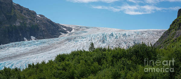 Wall Art - Photograph - Exit Glacier by Michael Ver Sprill