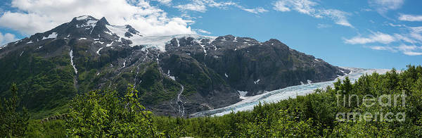 Photograph - Exit Glacier Panorama  by Michael Ver Sprill