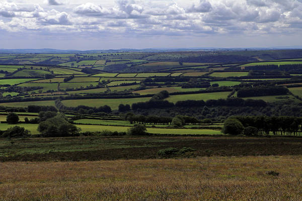 Photograph - Exmoor Landscape by Tony Murtagh
