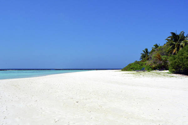 Photograph - Exotic Beach In The Maldives With White Sand And Vegetation by Oana Unciuleanu