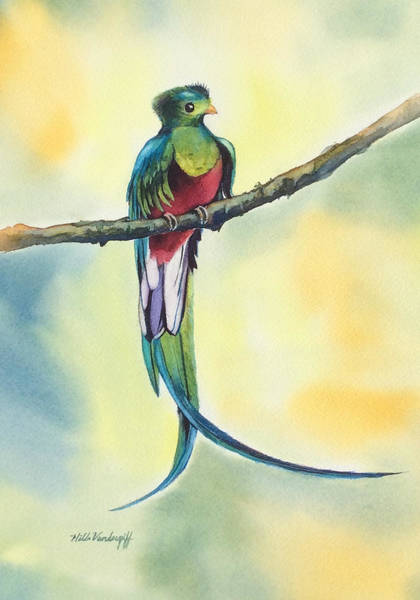 Painting - Exotic Bird by Hilda Vandergriff