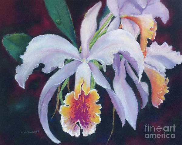 Painting - Exotic White Orchid by Hilda Vandergriff