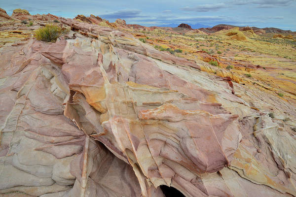 Photograph - Expanse Of Color In Valley Of Fire by Ray Mathis