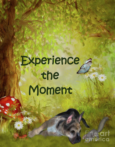 Painting - Experience The Moment Puppy Inspirational by Smilin Eyes  Treasures