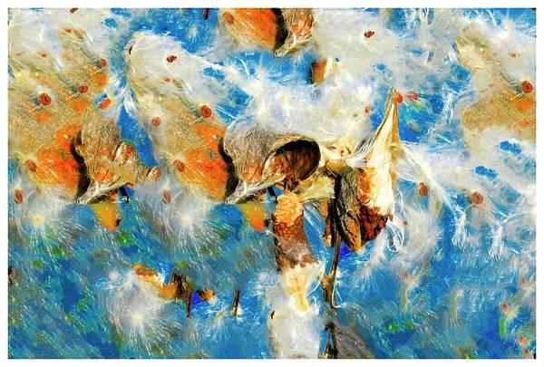 Digital Art - Exploded Milkweed Seed Pod by Rusty R Smith