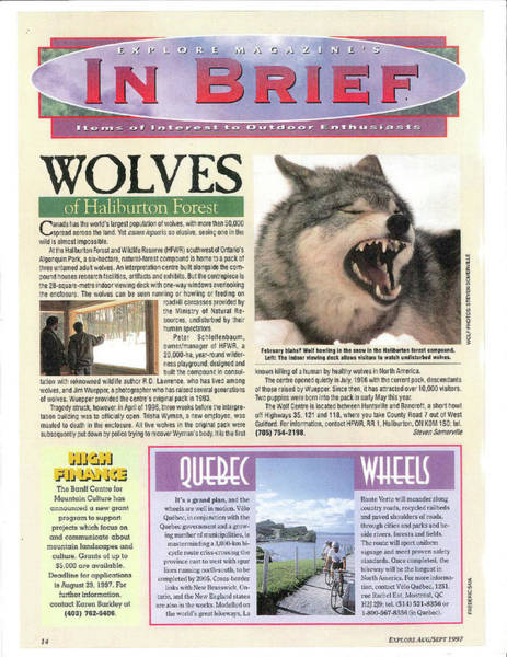 Tapestry - Textile - Explore Magazine - Wolves Article by Steve Somerville