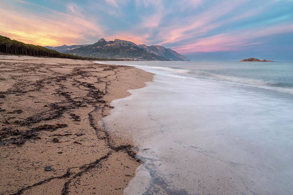 Photograph - Explosion Of Colors On The Beach by Daniele Fanni