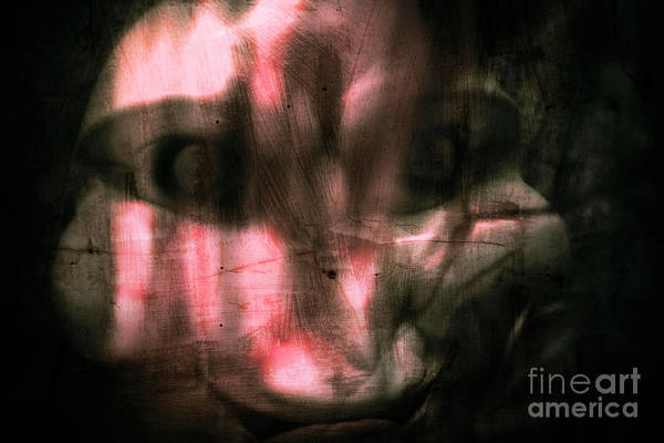 Bizarre Wall Art - Photograph - Exposing The Madness by Jorgo Photography - Wall Art Gallery