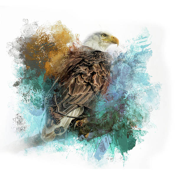 Photograph - Expressions Bald Eagle by Jai Johnson