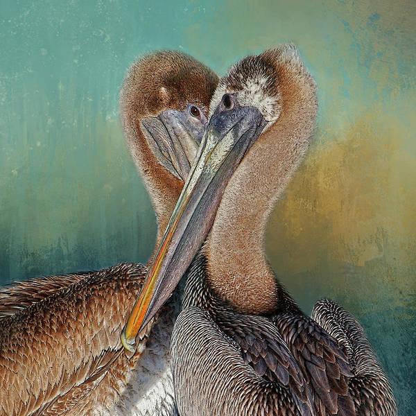 Gular Photograph - Eye 2 Eye - Heart 2 Heart - Brown Pelican by HH Photography of Florida