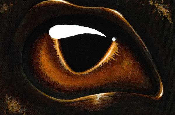 Bronze Painting - Eye Of Baby Bronze by Elaina  Wagner