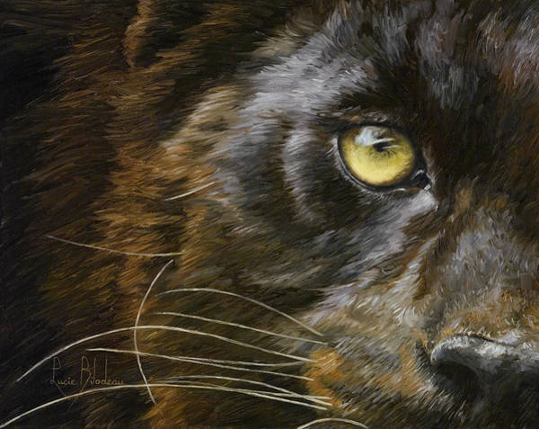 Painting - Eye Of The Panther by Lucie Bilodeau
