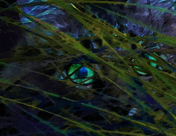 Wall Art - Mixed Media - Eye Spy by Lee Baker DeVore
