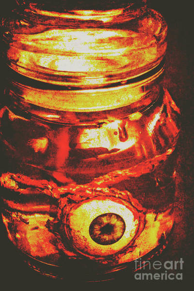 Anatomy Wall Art - Photograph - Eyes Of Formaldehyde by Jorgo Photography - Wall Art Gallery