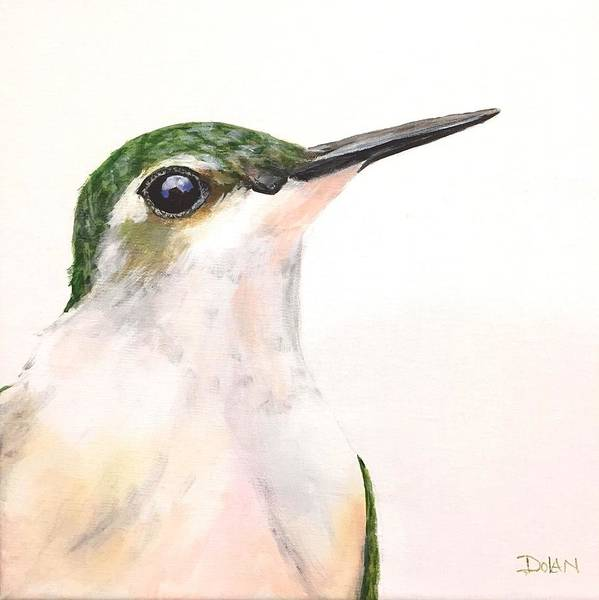Painting - F. Ruby Throated Hummingbird by Pat Dolan