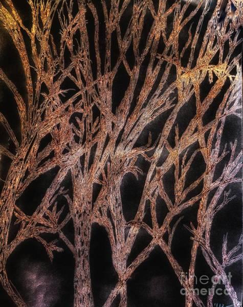 Mixed Media - Fabric Of Night by Rachel Hannah