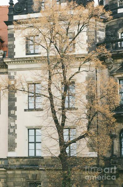Wall Art - Photograph - Facade In Prague by Jelena Jovanovic