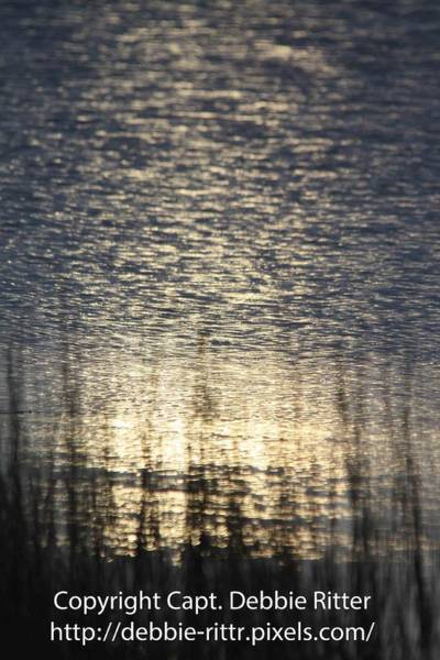 Photograph - Face In The Bay by Captain Debbie Ritter