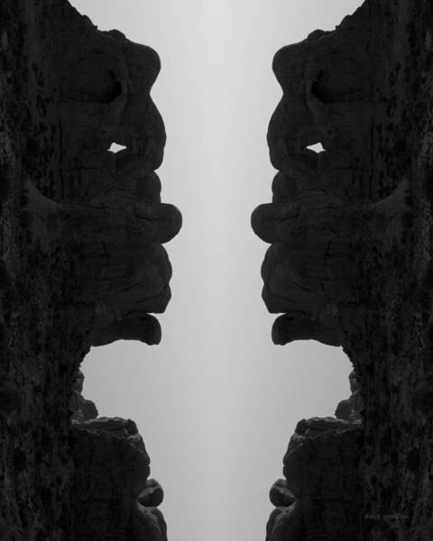 Photograph - Face To Face IIi Bw by David Gordon