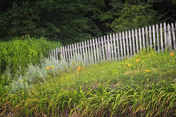 Photograph - Faded Fence by Tom Singleton