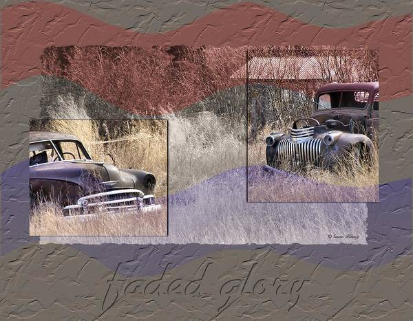 Photograph - Faded Glory by Susan Kinney
