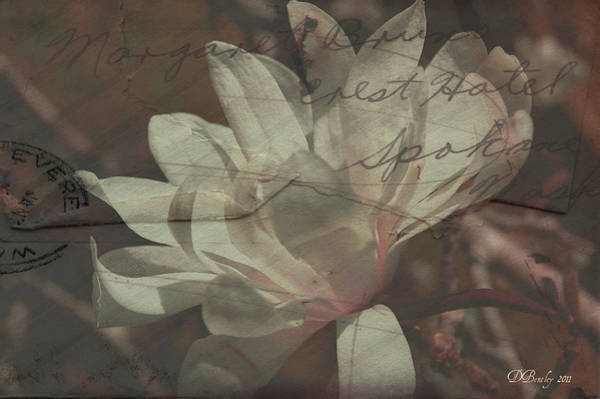 Photograph - Faded Love Letters1 by Donna Bentley