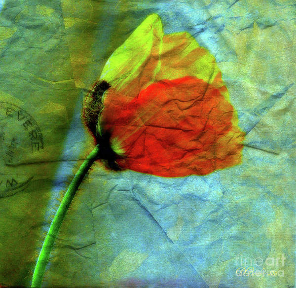 Photograph - Faded Love Letters3 by Donna Bentley