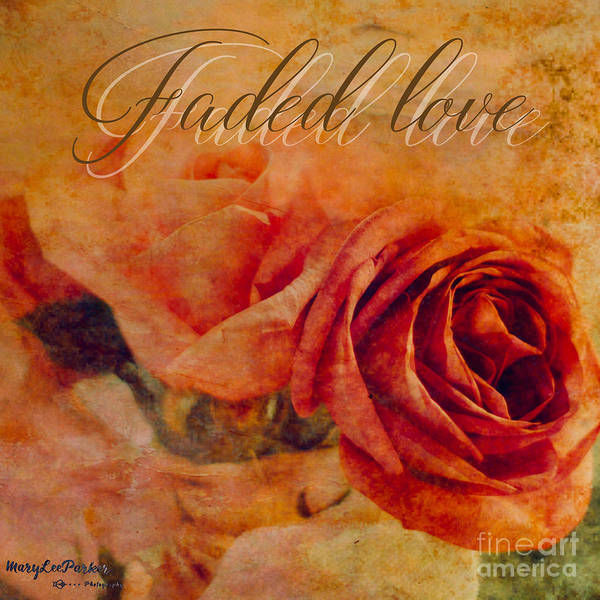 Mixed Media - Faded Love by MaryLee Parker