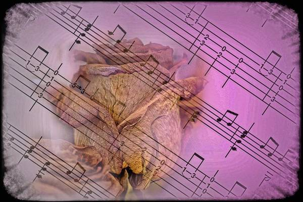 Wall Art - Photograph - Faded Music by Ches Black