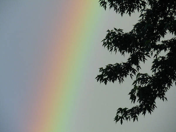Photograph - Faded Rainbow by Robert Knight