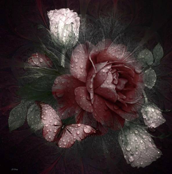 Faded Mixed Media - Faded Rose by G Berry