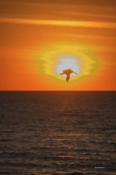 Photograph - Fading Fast Sunset by Roberta Byram