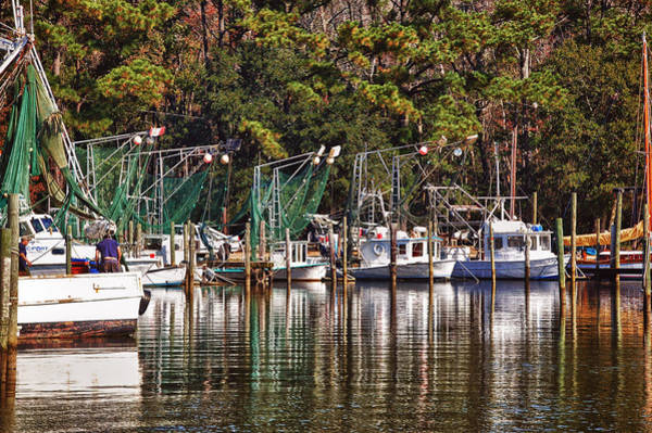 Photograph - Fairhope Fleet by Michael Thomas