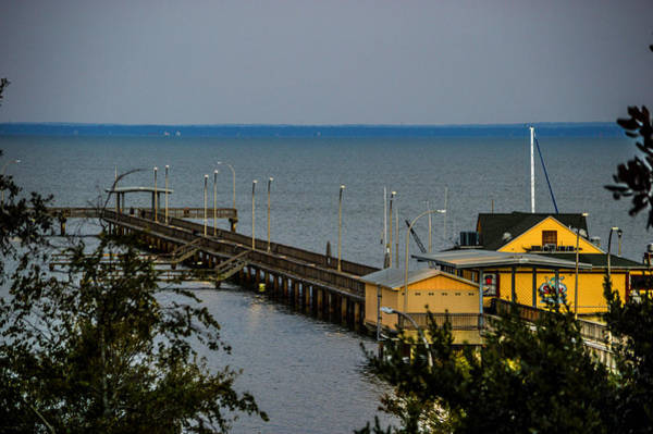 Photograph - Fairhope Pier From Overlook by Michael Thomas