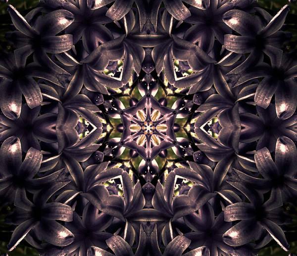 Digital Art - Fairies Of The Hyacinth by Danielle R T Haney