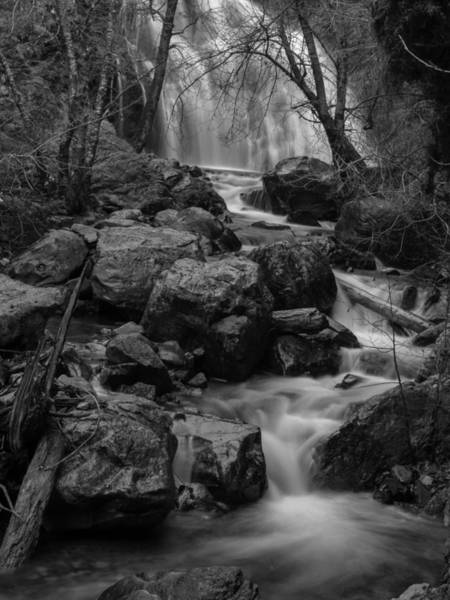 Woodlot Photograph - Fairy Falls by Michele James