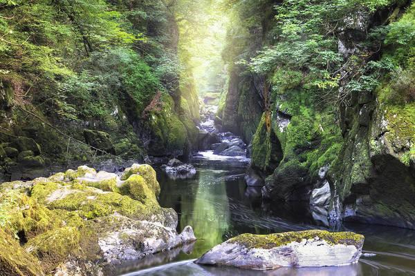 Coed Photograph - Fairy Glen - Wales by Joana Kruse