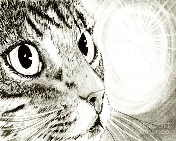 Fairy Light Tabby Cat Drawing Art Print