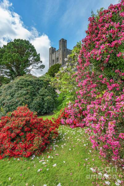 Castle Garden Photograph - Fairy Tale Garden by Adrian Evans