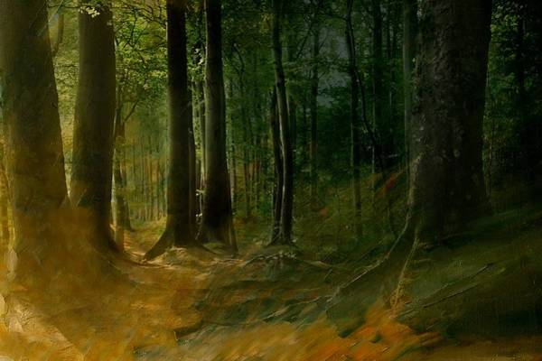 Wallpaper Mixed Media - Fairytale Forest by Heike Hultsch