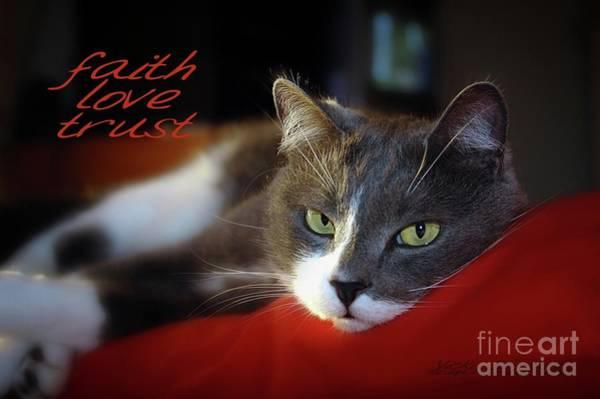 Photograph - Faith Love Trust by Vicki Ferrari