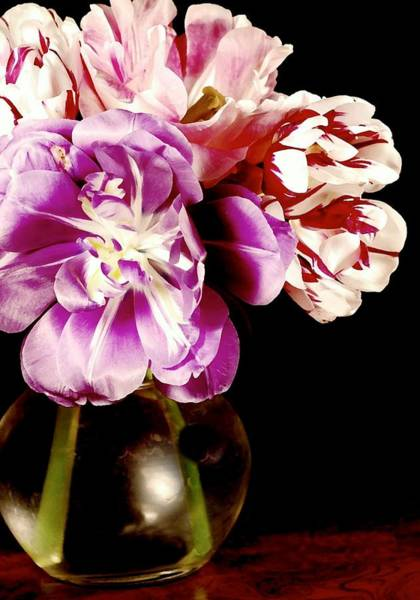 Flowers In A Vase Photograph - Faithfully by Diana Angstadt