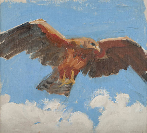 Painting - Falcon by Akseli Gallen-Kallela
